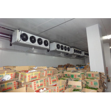 Quarto com congelador / sala de armazenamento a frio