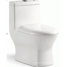 Baño sanitario baño diseño atractivo Siphonic una pieza de tocador (6209)