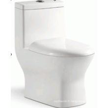 Sanitaires Salle de bain Design attrayant Siphonic One Piece Toilet (6209)