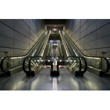 Escalera mecánica, elevación de pasajeros móvil