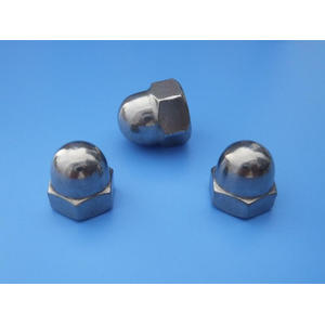 Fasteners hexagon Nylon lock cap nut