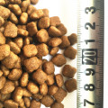 Fresh and natural diet dog food suppliers