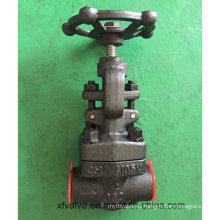 API602 forjó la válvula de globo del extremo NPT del hilo de rosca A105 del acero de carbono