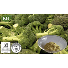 Extrait de brocoli de haute qualité, Sulforaphane 0,1%, 5%, 10%, 50% par HPLC;