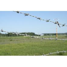 Verzinktes Eisen Stacheldraht für Zaun
