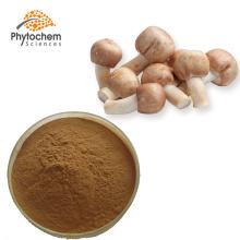 High quality agaricus blazei murill mushroom polysaccharide extract
