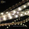 RGB 220v flexible led Light strip 5050 SMD led strip