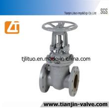 Válvula de porta padrão 30c41nj do aço de molde do GOST, Pn16