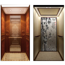 China Edelstahl Wohn-Aufzug Aufzug