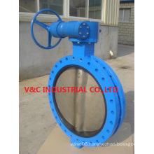 U Flange Butterfly Valve with Casting Body