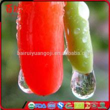 Ningxia bayas de Goji de las importaciones perfectas de las bayas goji precio de la baya de goji con razonable