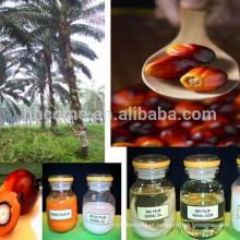 Descoramento do óleo de palma de 10T / H RBD, equipamento do desodorization, equipamento da refinaria de óleo da palma