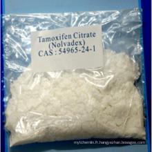 Anti-œstrogène Steroides Tamoxifène Citrate pour le traitement du cancer CAS 54965-24-1