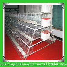 china popular and good quality poultry manure belts