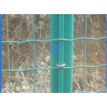 Malha de arame protegida pela fábrica de PVC