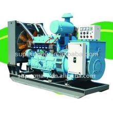 Générateur de gaz NAT 330kva avec CE ISO à vendre