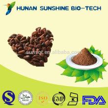 Schokoladen-Rohstoff-Nahrungsmittelzusatz-Kakao-Baum sät Pulver