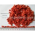 Dried Goji Berry Wholesaler
