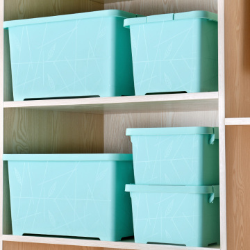 2018 Eco-Friendly and Sundries Use Plastic  Buckle Down Box