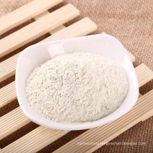 Best Price Factory Supply Natural Dehydrated Onion Powder