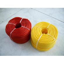 PE Rope/Polyethylene Rope