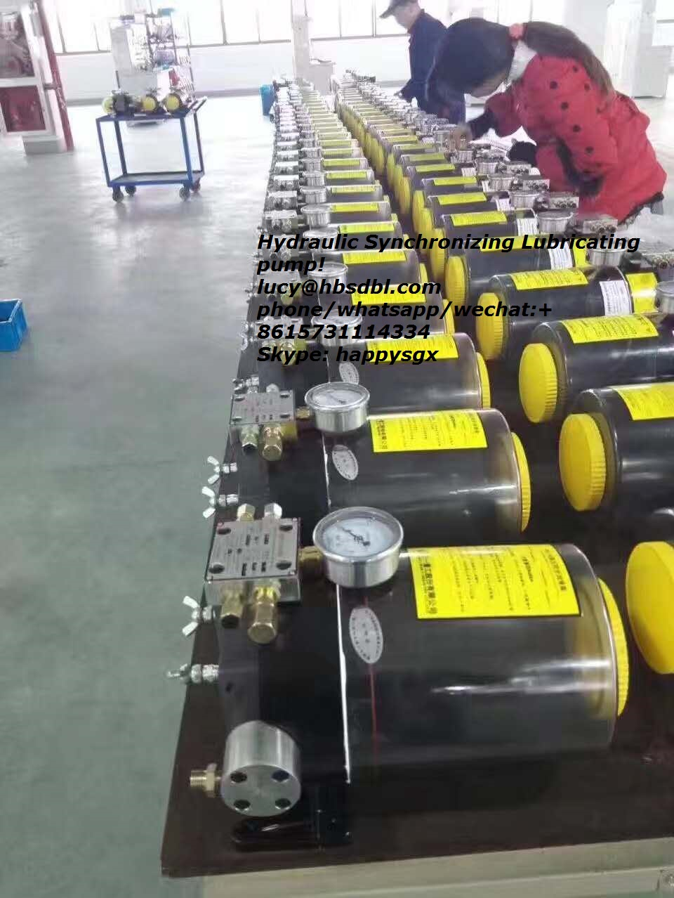 Lubricating Pump