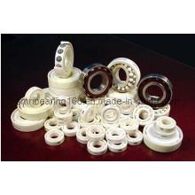 China Ceramic Bearing
