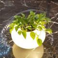Современная опаловая белая базовая стеклянная настольная лампа для гостиничного проекта
