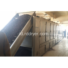 Cordyceps flower belt dryer
