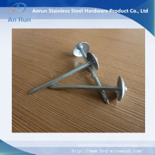 Roofing Nail with Washer 90mmx4mm