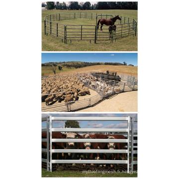 Panneau de jardin d'élevage galvanisé d'occasion