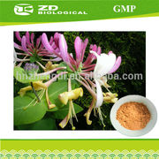 Animal Feed Additive Honeysuckle Flower Extract