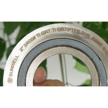 Special Materials Spiral Wound Gaskets Ti