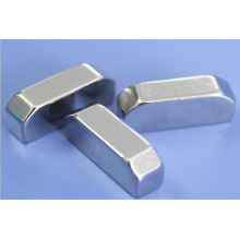 High Quality Permanent Neodymium Magnet of Special Shape