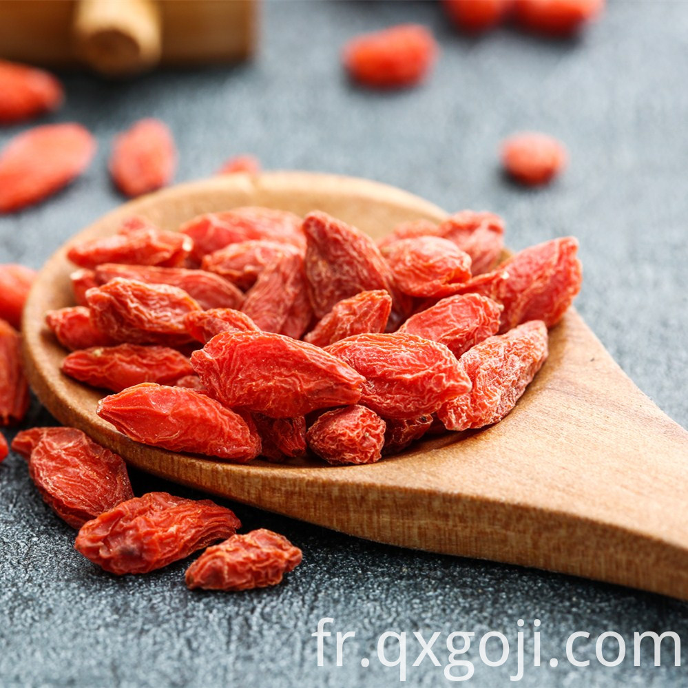 Organic Dried Red Goji Berry Fruit