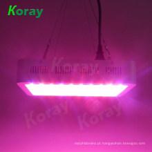 Plantio de estufa de alta potência 1000W LED cresce luzes