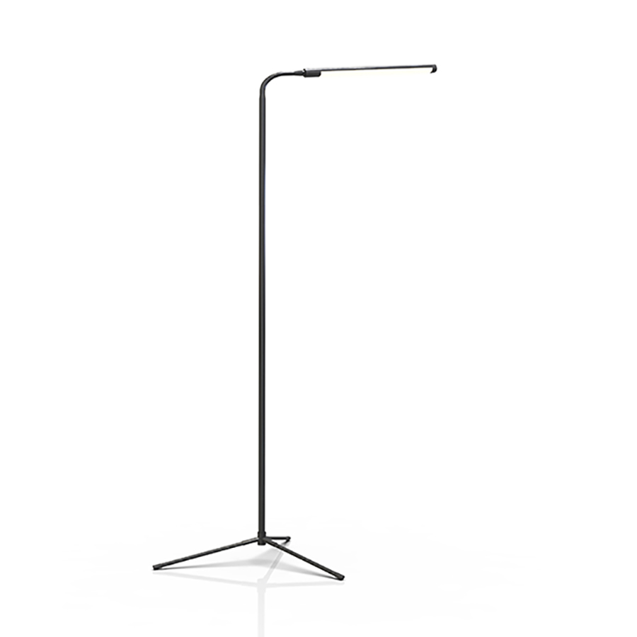 Dimmable Floor Lamp With Rfcontrol
