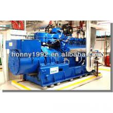 MWM двигатель электрический генератор с генератором переменного тока Marelli