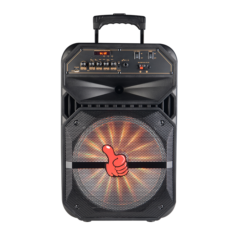 outdoor speaker with subwoofer