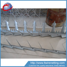 Competitive price wall spike used for anti-climb,anti bird spikes wall spikes