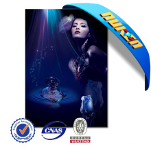 High Quality 3D Lenticular Posters Film