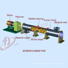 Long service life large output Chain sale chain scraper screw conveyor for powder