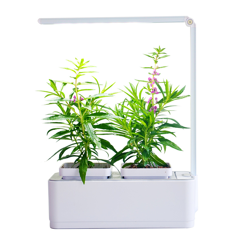 Pot de fleurs d'intérieur Smart Led Light Hydroponic Systems