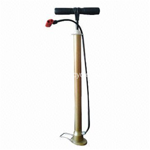 Fahrrad-Handpumpen in Tyre Inflation Tools