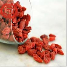5kg Embalagem Goji Berry Fruits Organic Goji Berries