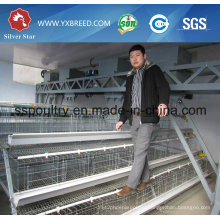 Best Sell Battery Layer Chicken Cages