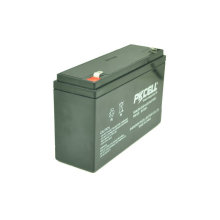 PKCELL 6V 12Ah SLA lead acid battery 6V VRLA storage battery cell