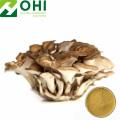 Maitake Mushroom Grifola Frondosa Extract