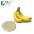 Polvo de extracto de plátano secado por aspersión 100% natural
