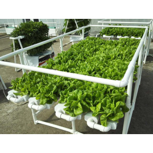 Hydroponic Food  Grade  PVC Pipe